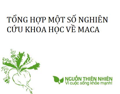 Tổng hợp một số nguyên cứu về Maca (Lepidium Meyenii)